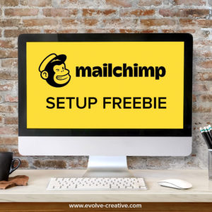 https://www.evolvecreative.com/wp-content/uploads/setup-freebie-mailchimp-300x300.jpg